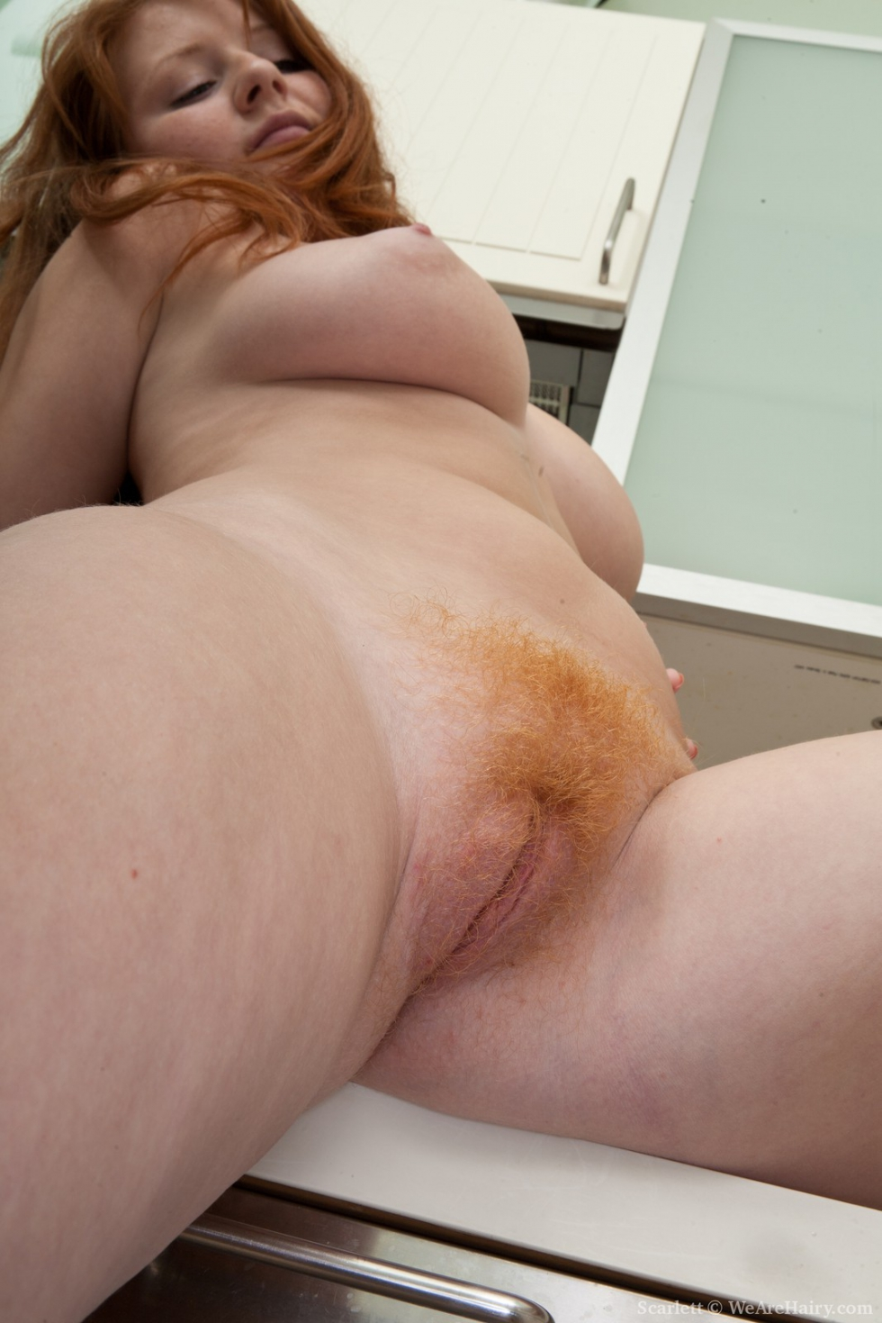 Beauty hairy red head commit